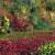 Autumn Palette thumbnail
