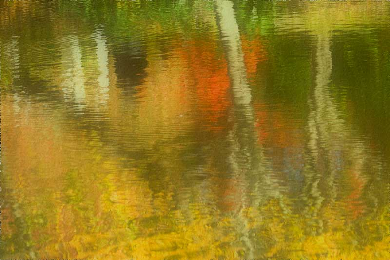 Autumn Color Reflection