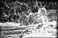 Water Music Series #5009