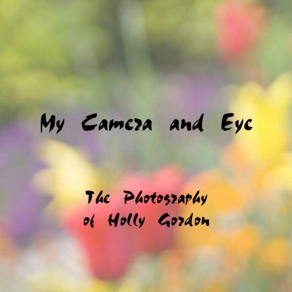 My Camera and Eye