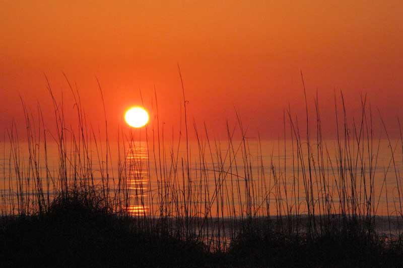 Carolina Sunrise-1