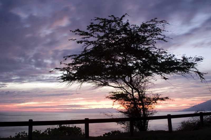 Kehei Sunset5404alt_V6P5404