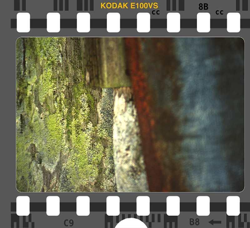 Kodak E100VS Giverny