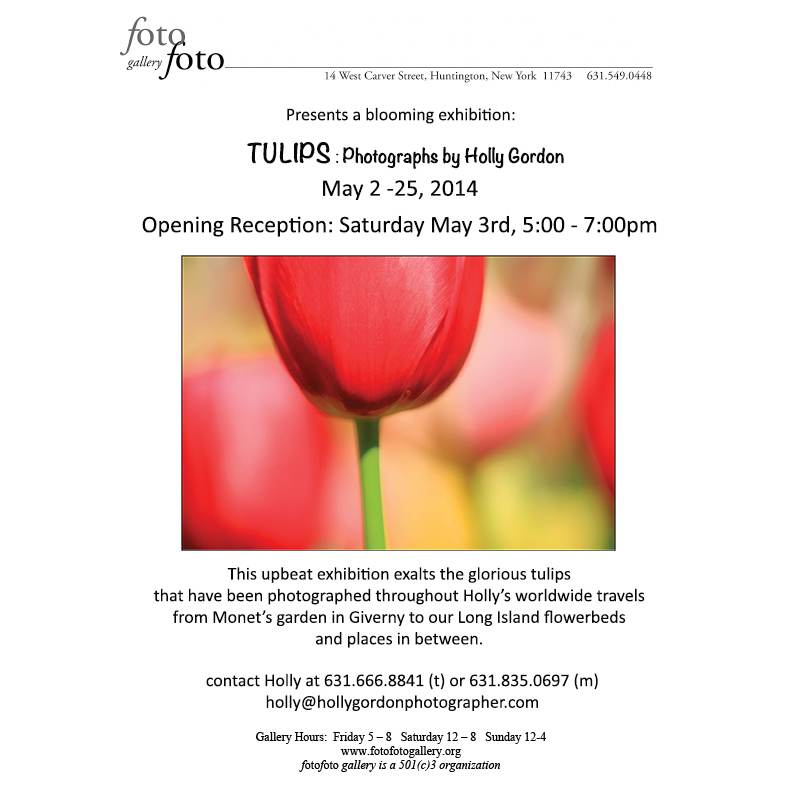 FotoFoto Gallery Tulips Exhibition