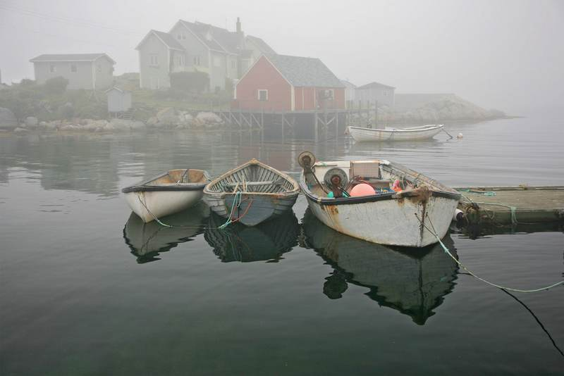 Holly Gordon: Foggy Harbor
