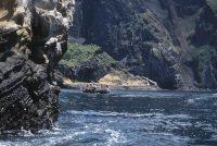 Cliffs of Punta Vicente Roca, Isabella Island