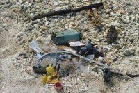 Trash Washed Ashore